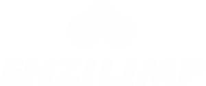 Enzilimp - logo branco transparente